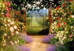 Как оформить вход в сад