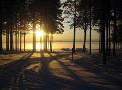 Активный зимний отдых в России