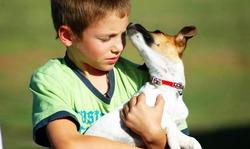 Влияние животных на развитие ребенка