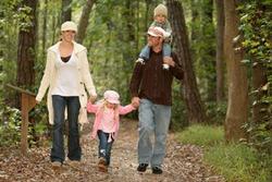 Как разнообразить семейный досуг